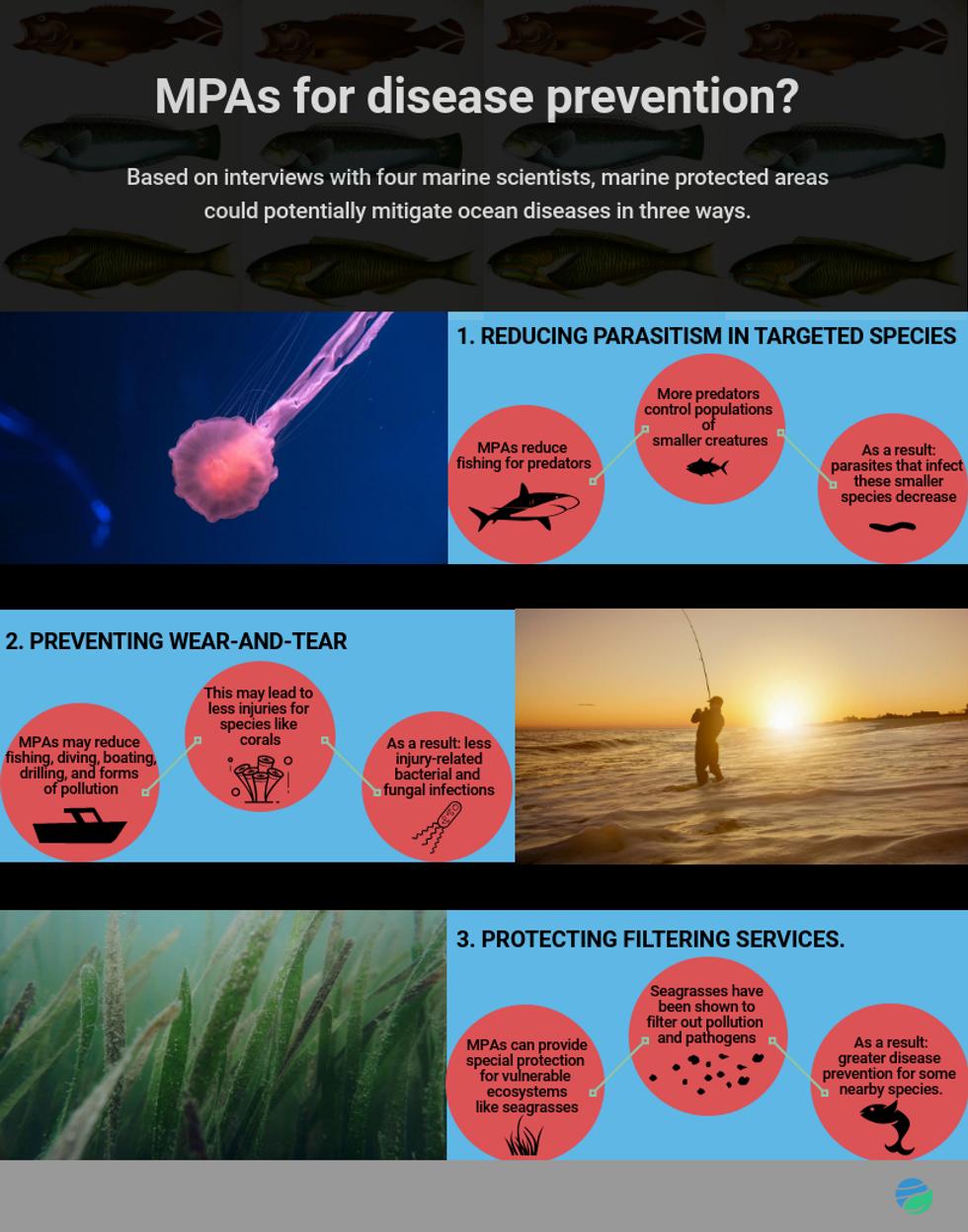ocean disease