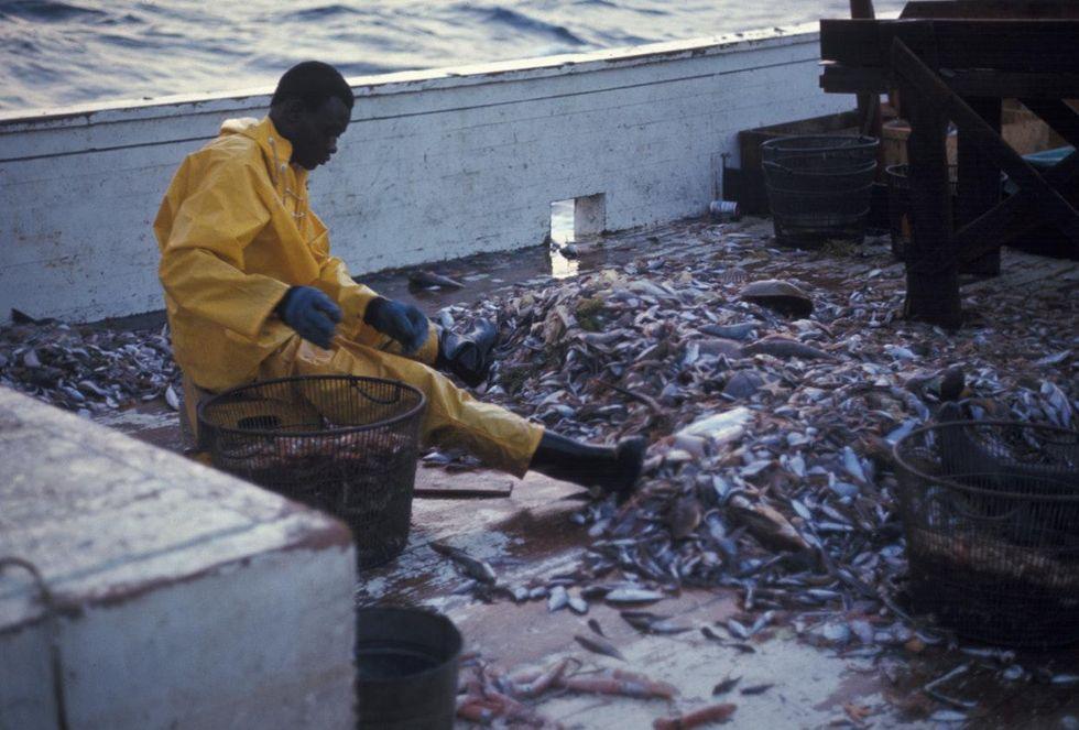 overfishing ocean